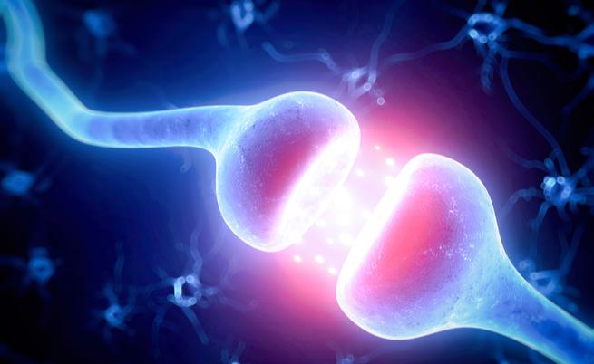 Come riconoscere il neuroblastoma? Un grave tumore che colpisce i bambini