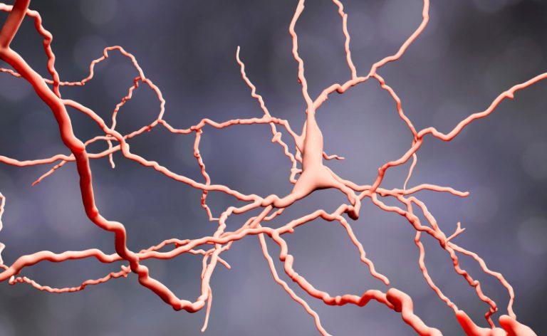 Autismo e schizofrenia: esiste davvero un legame?