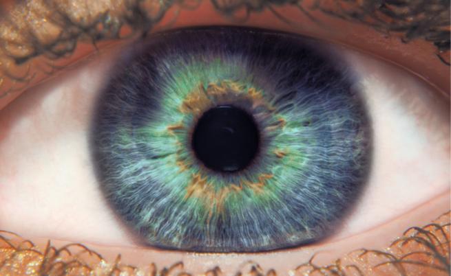 529b8e44a05a Se soffri di problemi agli occhi