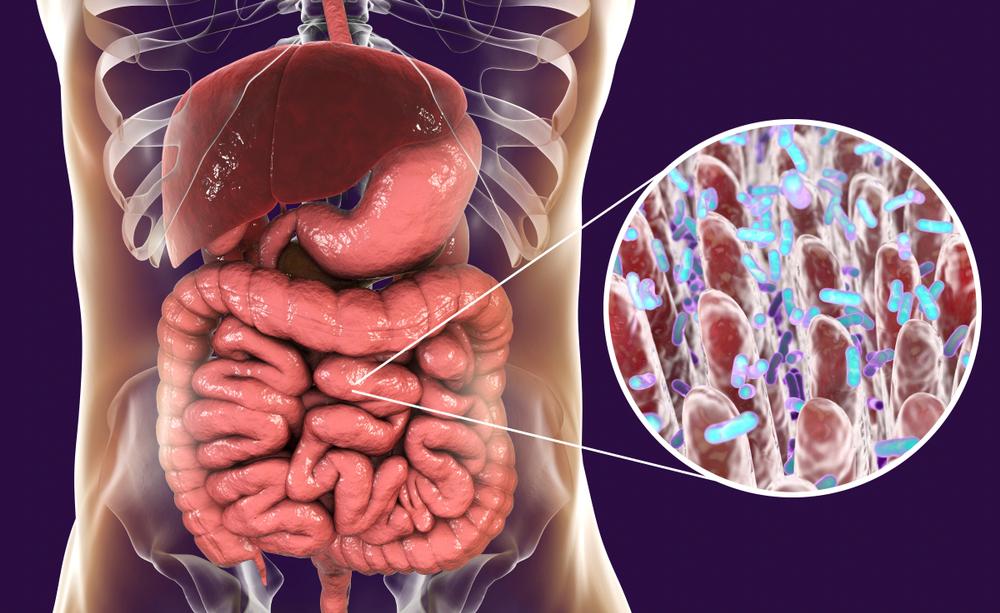 Disturbi intestinali: i valori del sangue che è bene controllare