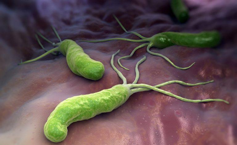 Mal di stomaco e reflusso: come scoprire se si ha l'Helicobacter Pylori?