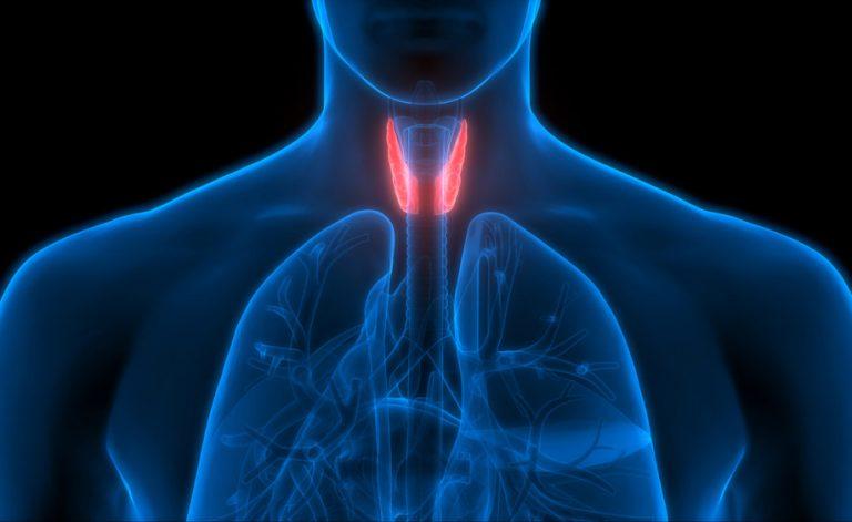 Ipotiroidismo: tutti gli effetti sull'organismo