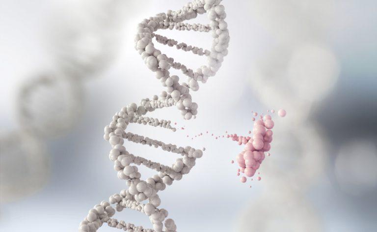 Immunodeficienze primitive: insieme a LaSpes per trovare le cure migliori