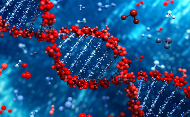Cina, create due gemelline con Dna modificato