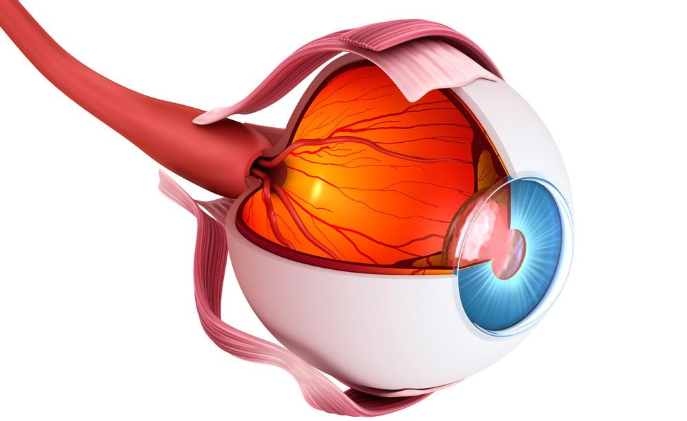 Quali esami sono più utili per la diagnosi del glaucoma. Il follow-up efficace