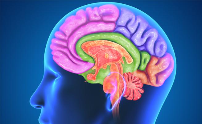 10 modi per aumentare la dopamina (in modo naturale)