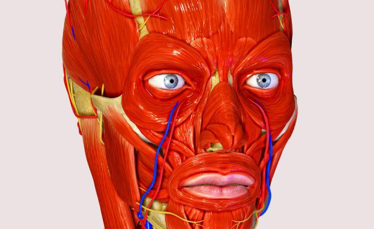 Curare la paralisi del facciale: come fare