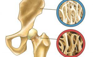 Magnesio e Vitamina D: per la salute delle ossa