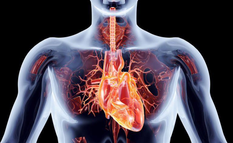 Cosa evitare quando si ha un pacemaker