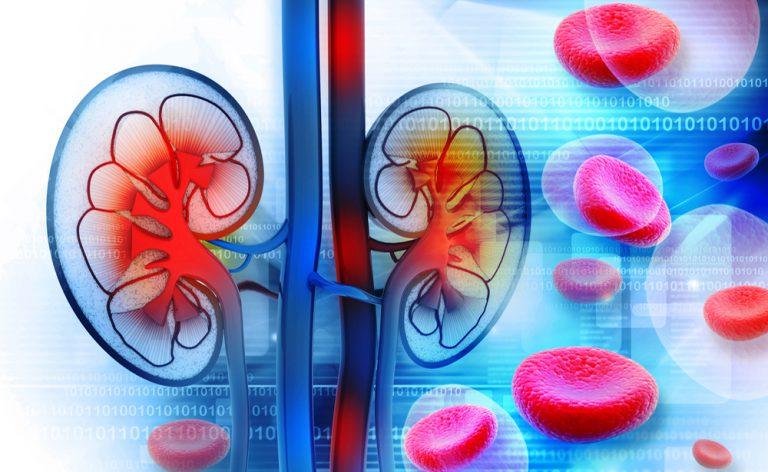 Malattie renali, rischio molto alto per i diabetici: le novità
