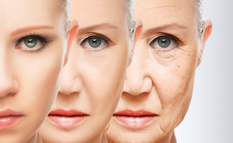 Come cambia il corpo di una donna dai 20 ai 60 anni