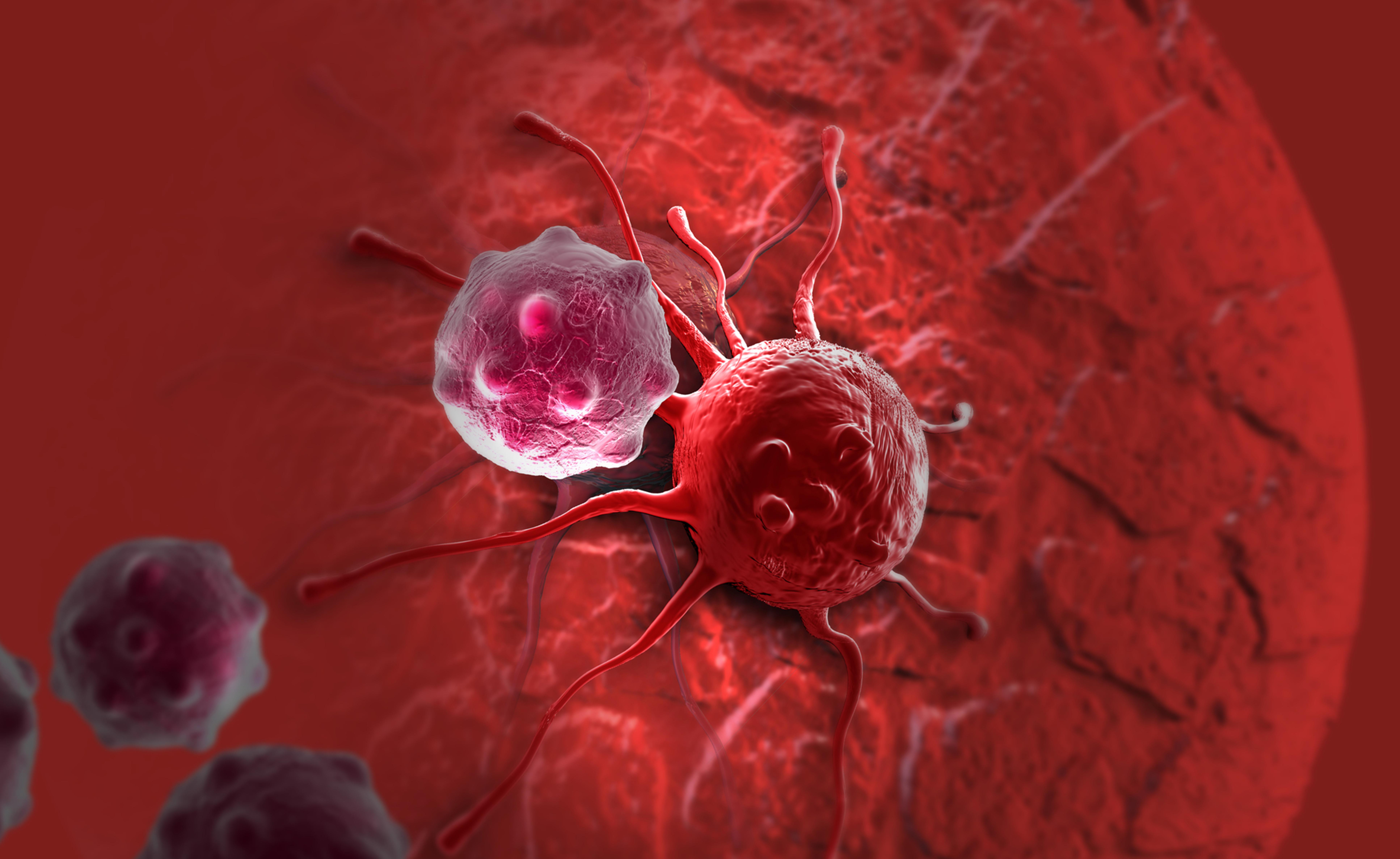 Esenzione 048 per chi ha un tumore: cosa prevede?