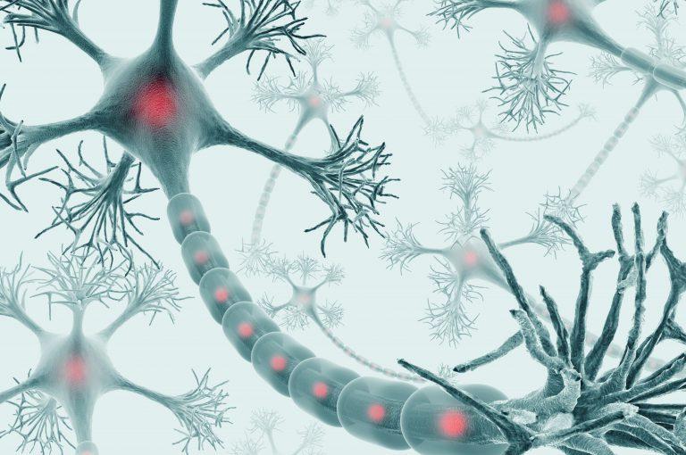 Malattia di Huntington: una malattia rara, ma non così tanto