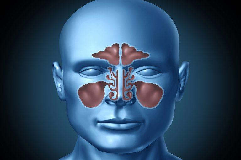 Perché è così importante respirare bene dal naso?