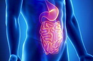 Sindrome della fermentazione intestinale